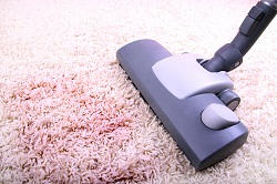 Expert Home Carpet Cleaning in SW20