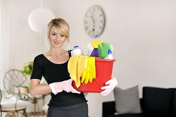 Professional Domestic Cleaners in SW20